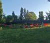 Verde urbano a Rende: che tristezza i parchi di Quattromiglia