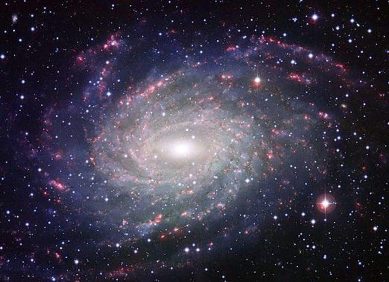 Il discorso delle stelle: la pace del futuro tra amore e distopia